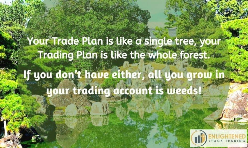 trade-plan-is-like-a-tree-trading-plan-is-like-a-garden-1024x612
