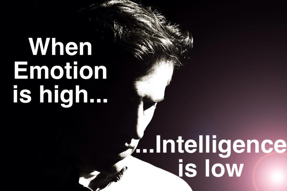 What To Do With Your Stock Trading When The Stock Market Loses Its Mind - Emotion Is High Intelligence Is Low